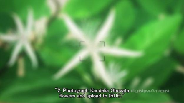 Screenshot - 12_21_2012 , 8_54_55 PM